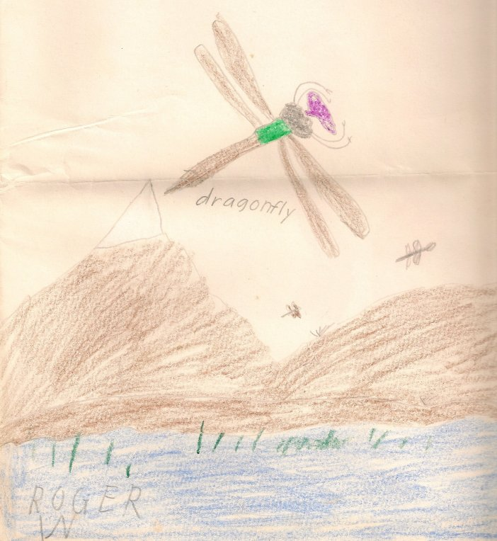 Dragonfly drawing by Roger J. Wendell at about age 11 - 1966