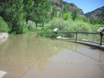 Colorado River Overflow at the Bair Ranch Rest Area by Roger J. Wendell on 06-06-2010