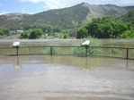 Colorado River Overflow at the Bair Ranch Rest Area by Roger J. Wendell on 06-08-2010