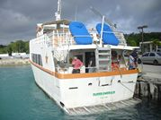 Agrihan Island, CNMI, by Roger J. Wendell - May/June 2015