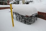 50 Centimetres Accumulation in our backyard on 02-04-2012